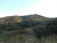 Cherry Canyon (48)