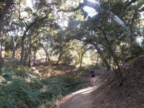 Cherry Canyon (5)
