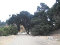 LowerArroyo (3)